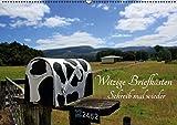 Witzige Briefkästen – Schreib mal wieder (Wandkalender 2016 DIN A2 quer): Die witzigsten Briefkästen aus Neuseeland mit coolen Sprüchen (Monatskalender, 14 Seiten) (CALVENDO Natur)