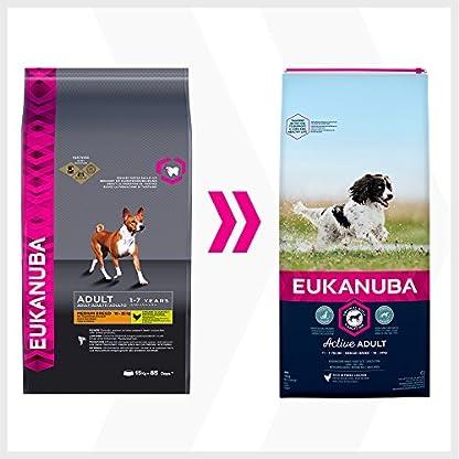 Eukanuba Dog Adult Medium Breed 11