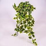 artplants Künstlicher Efeubusch mit 330 Blättern, grün - weiß, 70 cm - Künstliche Pflanzen Efeu/Kunstefeu