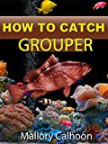 How To Catch Grouper (English Edition)