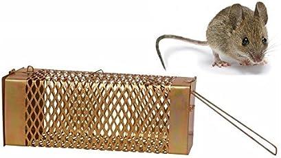 Krisah® 1 pcs Medium Size Rat/Mouse/Rodent Trap Cage (1, Medium)