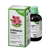 Salus Echinacea-Tropfen, 100 ml Tropfen