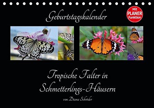Geburtstagskalender Tropische Falter in Schmetterlings-Häusern (Tischkalender 2019 DIN A5 quer): Artenbeschreibung von tropischen Schmetterlingen (Geburtstagskalender, 14 Seiten ) (CALVENDO Wissen)