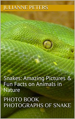 photo-book-photographs-of-snake-snakes-amazing-pictures-fun-facts-on-animals-in-nature-english-editi