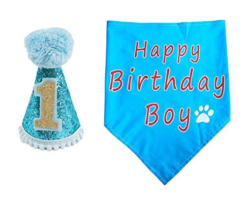 BIPY Hund 1. Geburtstag Hat, für Jungen Kleine Medium Große Hunde Katzen Kostüme mit Kopfbedeckungen ()