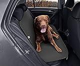 Kegel Blazusiak Rücksitz Doppel-Schutzmatte Hundetransport JUNIOR Duo JUNIORDUO-002