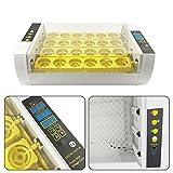 Incubadoras Automática para 24 Huevos Incubadoras de huevos Digital con Pantalla LED, Automática...