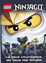 Lego Ninjago : Le plus courageux de tous les Ninjas