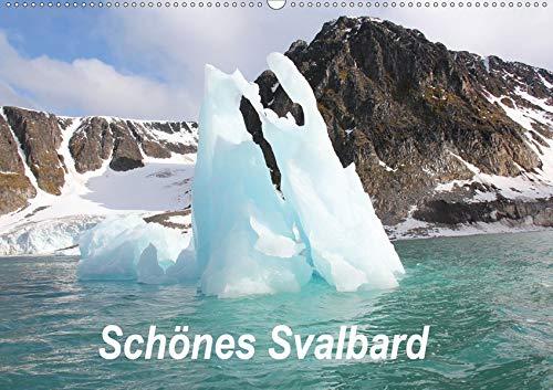 Schönes Svalbard (Wandkalender 2020 DIN A2 quer): Svalbard - Eine faszinierend farbenfrohe Landschaft inmitten des Eismeeres. (Monatskalender, 14 Seiten ) (CALVENDO Natur)