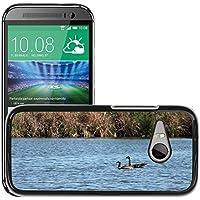 Grand Phone Cases Hard plastica indietro Case Custodie Cover Pelle protettiva per // M00141718 Oies rivière Natation Canada Goose Eau // HTC One Mini 2 / M8 Mini / (Not Fits M8)