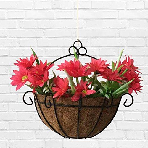 Kofun Panier à Suspendre en Forme de Palme de Noix de Coco, Pot de Fleurs, Fer à Coco, jardinière à Suspendre, paniers muraux, Demi-Ronds 10#
