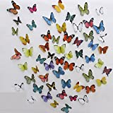#6: Jaamso Royals 'Multi Color 3D Butterflies' Wall Sticker 1 Combo Pack of 38 pcs (21 cm X 29.7 cm(2 Sheet) )
