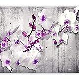 murando - Fototapete 250x175 cm - Vlies Tapete - Moderne Wanddeko - Design Tapete - Wandtapete - Wand Dekoration - Blumen Orchidee Beton b-A-0157-a-d