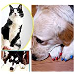 Crasy Shop 20Pcs/Lot Soft Silicon Pet Dog Cat Nail Caps Kitten Claws Paws Control Nail Protector Cover with Adhesive… 14