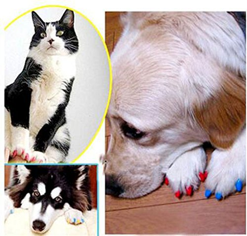 Crasy Shop 20Pcs/Lot Soft Silicon Pet Dog Cat Nail Caps Kitten Claws Paws Control Nail Protector Cover with Adhesive… 7