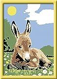 Ravensburger Malen nach Zahlen 27993 - Kleiner Esel, 13 x 18 cm