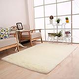 flauschig Bereich, hinmay Weich rutschsicheren Teppich Shaggy Teppich Matte Teppich für Wohnzimmer Schlafzimmer Esszimmer, Floor 40* 60* cm Free Size #5