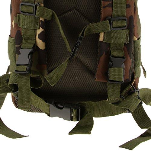 Generic Outdoor-militärische Taktische Wanderrucksack Rucksack Camping Wandern Trekking Reisen Tasche 30L Dschungel Camo