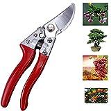 Sécateur - Smaier Outil de jardin - Les ciseaux pour le jardinage polyvalent, ciseaux avec des lames tranchantes, taille-haies, cisailles de jardin et de l'acier.