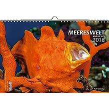 Kalender Meereswelt 2018 (Marine Life 2018) - Großformat 29,7 x 42 cm (A3) - 12 Fotografien einer einmaligen Unterwasserlandschaft und von ihren Bewohnern - 1 Titelbild mit edlem separatem Folienblatt
