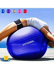 arteesol Gymnastikball Pilates Ball 45cm / 55cm / 65cm / 75 cm inkl. Pumpe Anti-Burst Sitzball für Yoga Exercise Fitness Physiotherapie (5 Farben)