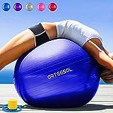 Arteesol Palla Fitness 45cm 55cm 65cm 75cm Palla da Ginnastica con Pompa per Yoga Pilates Terapia Fisica