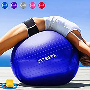 arteesol Gymnastikball Pilates Ball 45cm / 55cm / 65cm / 75 cm inkl. Pumpe Anti-Burst Sitzball für Yoga Exercise Fitness Physiotherapie (5 Farben)