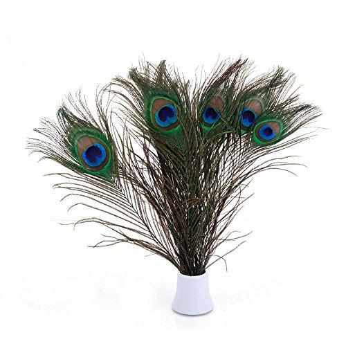 Echte natürliche Pfauenfedern, 25~30 cm, tolle Dekoration für Hochzeiten, Weihnachten, Halloween, Dekoration, Haus 25~30cm-10pcs-Natural