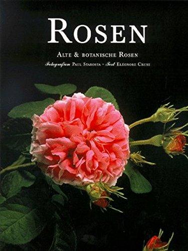 Rosen. Alte & Botanische Rosen - Botanische Rosen