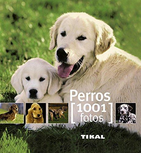 perros-1001-fotos
