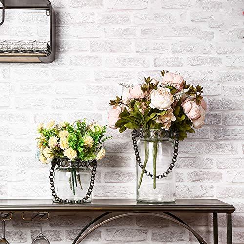 AHNNER An Der Wand Befestigter Blumen Pflanzer Vasen, Weinlese Eisen Hängender Klarglas Innenblumenübertopf Hydroponikterrarium Halter Ausgangsdekor Im Freien,A+b