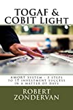TOGAF & COBIT Light: AMORT System - 5 steps to IT investment success in a matter of days (English Edition)