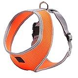 UEETEK Cane domestico seno imbracatura sicurezza Gilet imbracatura per cani - taglia XL (Arancia)