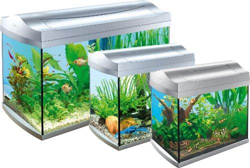 Tetra-AquaArt-Discovery-Line-Aquarium-Komplett-Set-anthrazit-inklusive-Tetra-EasyCrystal-FilterBox-und-Aquarienheizer-ideal-fr-die-Haltung-von-Garnelen-Krebse-oder-tropischen-Zierfische-verschiedene-G