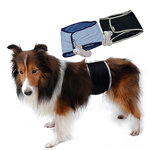 S-Lifeeling Waschbare Hundewindeln für Rüden, hygienisch, Größe L