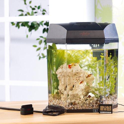 infactory Beleuchtetes Panorama-Aquarium