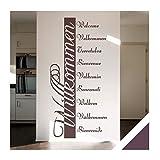 Exklusivpro Wandtattoo Willkommen in 10 Sprachen Flur Diele Eingang mit SWAROVSKI Strass (ban03 aubergine) 160 x 76 cm mit Farb- u. Größenauswahl