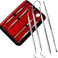 LVRXJP Zahnärztliches Kit Zahnärztliches Besteck Zahnputzset Zahnärztliches Zubehör