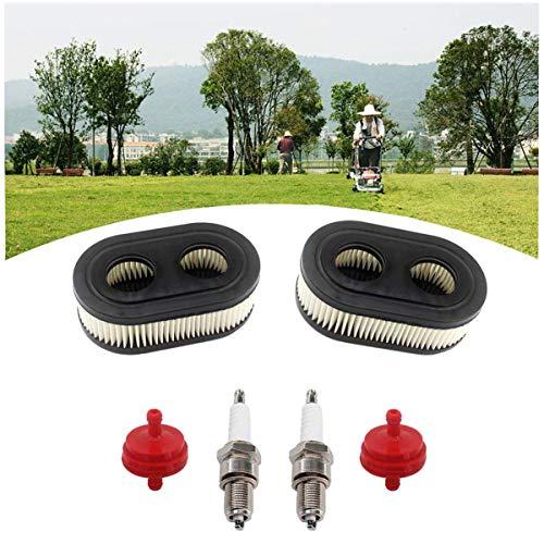 Dancepandas Filtro de Aire 2PCS Air Filter Filtro de Aire de Cortacésped Con Bujia Filtro de Gasolina...