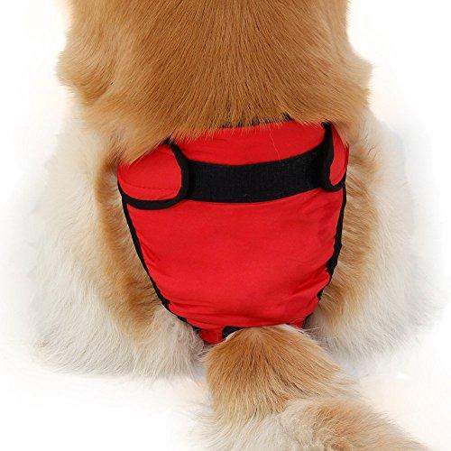 Weiblich Hunde Schutzhose Haustier Unterhose Unterwaesche Welpenhose Hose fuer Grosse/Kleine Hunde Laeufigkeit XL - 6