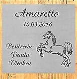 ID Pferdebox Schild mit Gravur nach Wunsch Edelstahl in 5 Größen Stalltafel ohne Bohrungen Boxenschild (20x20 cm)