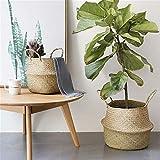 Piantare Vasi di Fiori Natural Woven Seagrass Carrello con Maniglie for Bagagli Servizio Lavanderia Picnic Vaso di Copertura (Sheet Size : 32x28cm)