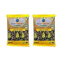 Blueorange Organic Black Urad daal 500 Gram (Pack of Two)