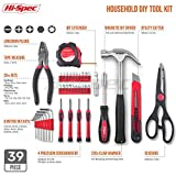 Hi-Spec Precision Tools 39 Piece DIY Home Household Toolkit with Combination Pliers in Box Case