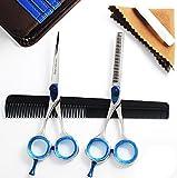 Professionelle Haarscheren stellten Effilierschere Friseurscheren Effilierscheren mikroverzahnt Set