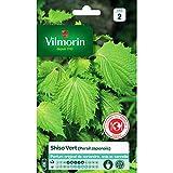 Vilmorin – Samen Shiso grün (japanischer Petersilien)