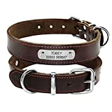 Berry Haustierhalsband mit Namenplättchen, braunes Lederband, personalisierbar, S, M, L