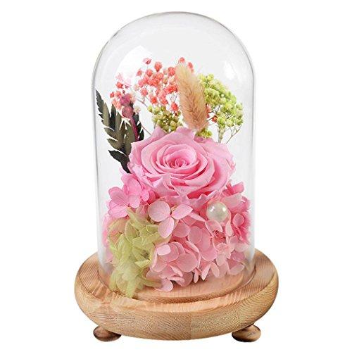 Preserved Fresh Flower Rose Eternal Flower Glass Cover Valentines