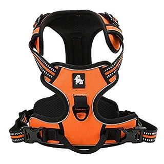 Kismaple Pettorina Regolabile Per Cane, 3M riflettente Cane imbracatura, morbido Imbottito No Pull All'aperto Super-comoda Dog Harness per la Corsa, Passeggiate, Jogging (S (43-56cm), Orange)