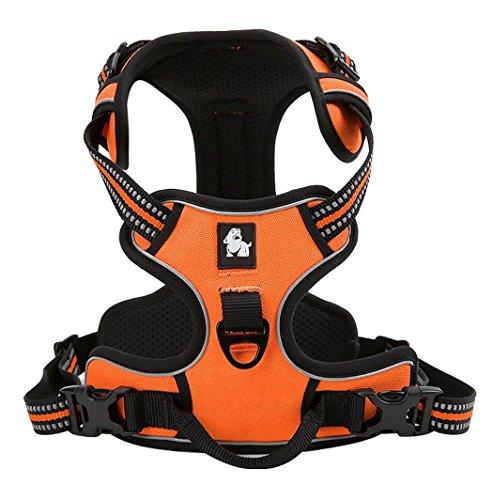 Rantow 3M Reflektierendes Hundegeschirre Einstellbares Sicherheitsgeschirre, weicher Laufgeschirre für große / mittlere / kleine Hunde, orange (L (69-81cm))